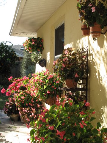 Tips On Creating A Spanish Style Patio Garden For Entertaining   Simple  Spanish Food