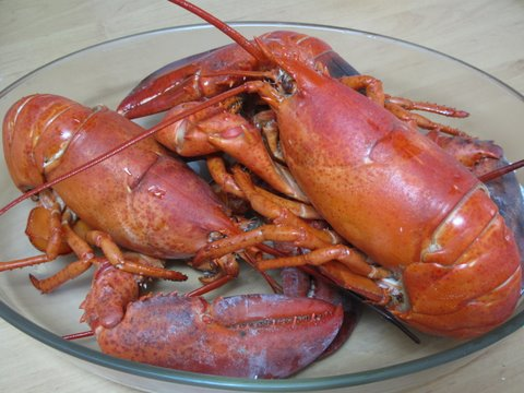 boiled lobsters, bogavantes