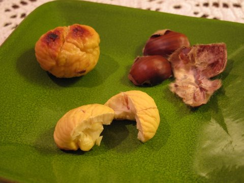 a roasted chestnuts, shelled and ready to eat
