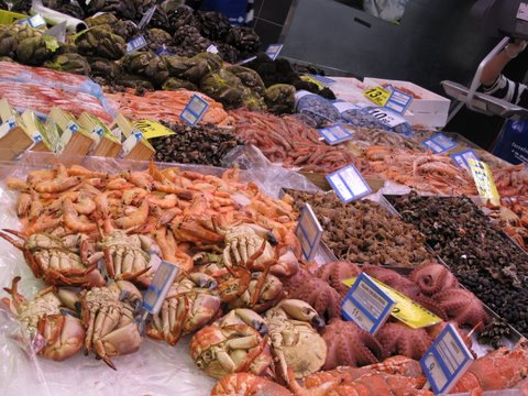 a variety of shellfish in a Madrid Fish market, including crabs (buey) and pulp (octopus), as well as many types of prawns (langostinos, cigalas, etc)