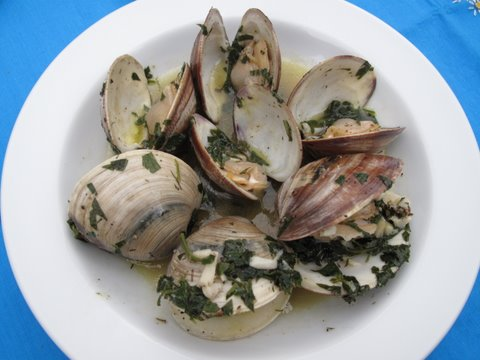 almejas a la marinera (clams with wine and herbs)