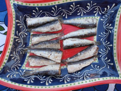 small Galician sardines, sardinillas gallegas