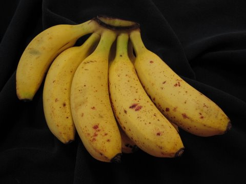Bananitos, apple bananas