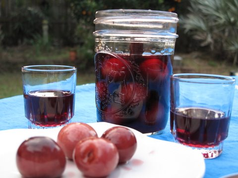 guindas al licor, cherries in brandy or aguardiente